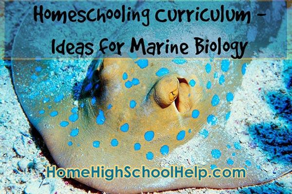Homeschool Curriculum Ideas For Marine Biology