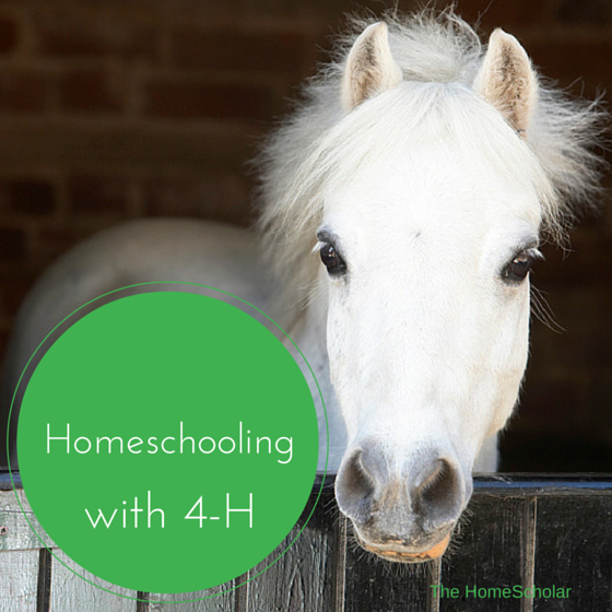Homeschooling with 4-H