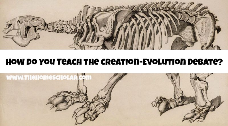 How Do You Teach the Creation-Evolution Debate?