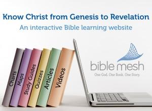 BibleMesh Biblical Story Course