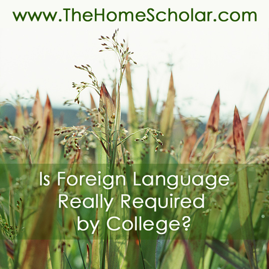 Foreign Language Really Required by College? @TheHomeScholar