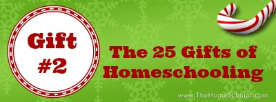 The 25 Gifts of Homeschooling: The Gift of Safety