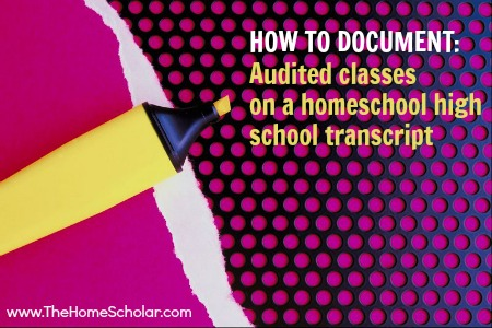 How to Document Audited Classes