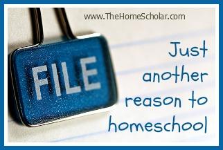 More Reasons to Homeschool