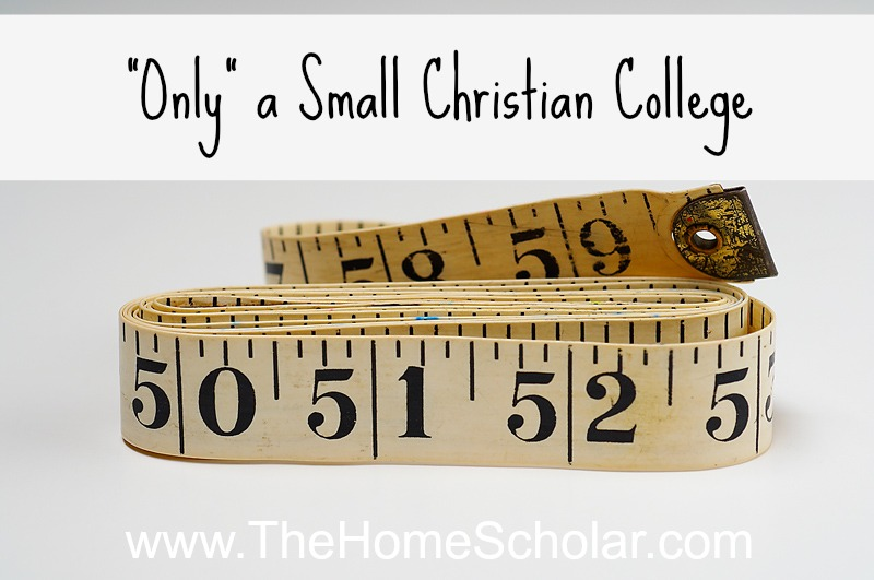 """Only"" a Small Christian College"