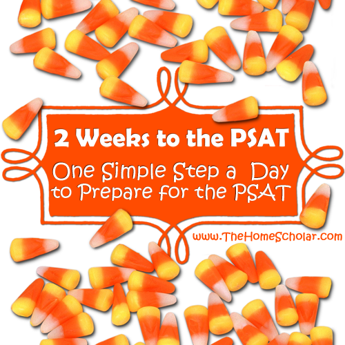 2 Weeks to the PSAT: One Simple Step a Day to Prepare for the PSAT