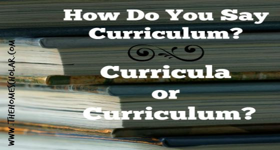 How Do You Say Curriculum? Curricula or Curriculum