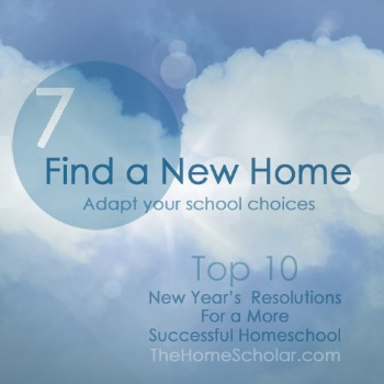 Resolution 7 @TheHomeScholar