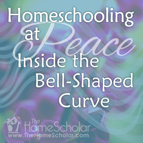 2015 HomeScholar year in review