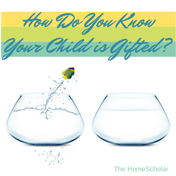 How Do You Know Your Child is Gifted?