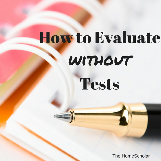 evaluate without tests